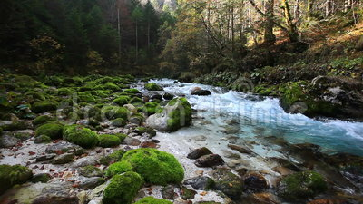Fresh cold mountain river with sound of nature. In Slovenian Alps stock footage