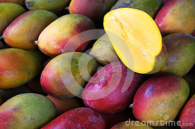Fresh Colorful Mangoes at Outdoor Fruit Market