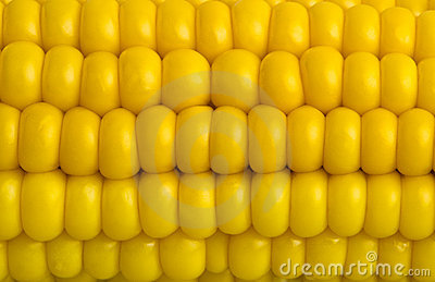 Fresh corn macro