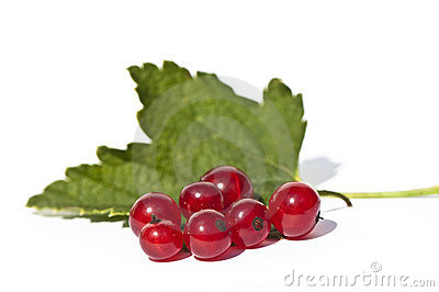 Fresh currant berries with leaf