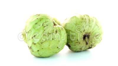 Fresh Custard Apple stock footage