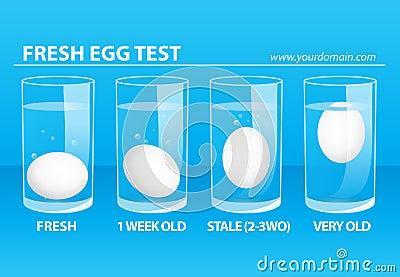 fresh egg test stock illustration image 45314349. Black Bedroom Furniture Sets. Home Design Ideas