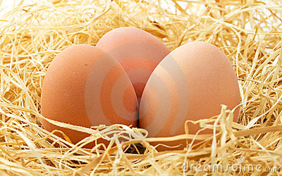Fresh Eggs Close Up Royalty Free Stock Image - Image: 19030126