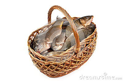 Fresh fish in a basket