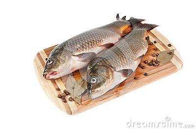 Fresh fish on the cutting board