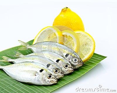 Fresh fish and lemon