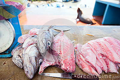 Fresh fish at seafood market