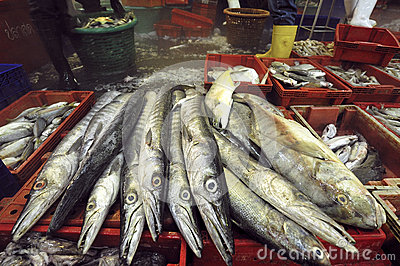Fresh fish at Talaythai seafood market in Thailand.