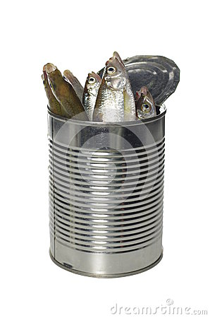 Fresh fishes  in tin