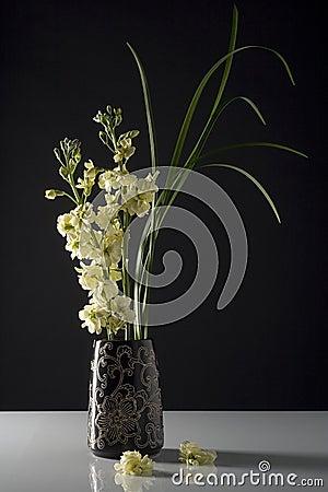 Free Fresh Flowers In Black Vase Stock Photography - 14444312