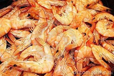 Fresh frozen shrimp