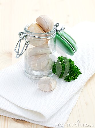 Fresh Garlic Stock Image - Image: 16541531