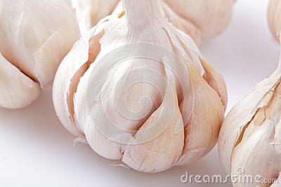Fresh garlic close up