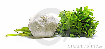 Fresh garlic with green parsley