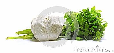 Fresh garlic with green parsley