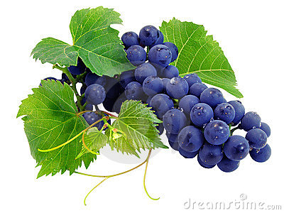 Fresh grape cluster with leafs