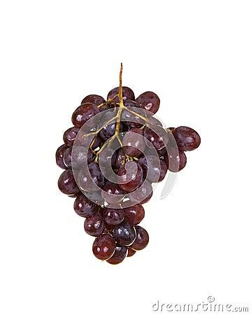 Free Fresh Grapes Royalty Free Stock Image - 4087936
