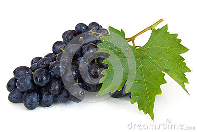 Fresh grapes with waterdrops