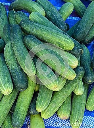 Free Fresh Green Cucumber Stock Photography - 42429242