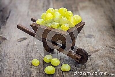 Fresh Green Grapes in a wheelbarrow