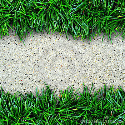 Fresh green grass and concrete