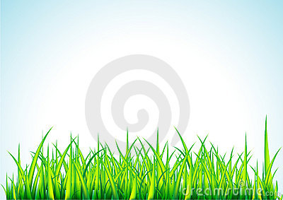 Fresh green grass illustration