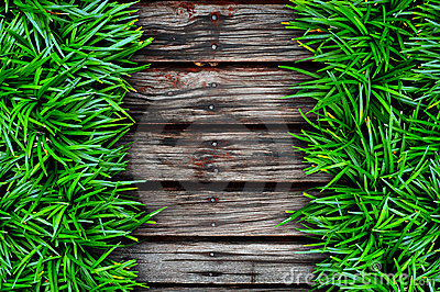 Fresh green grass and Wood