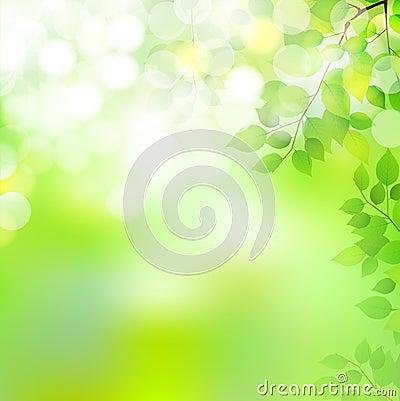 Fresh green leaf landscape