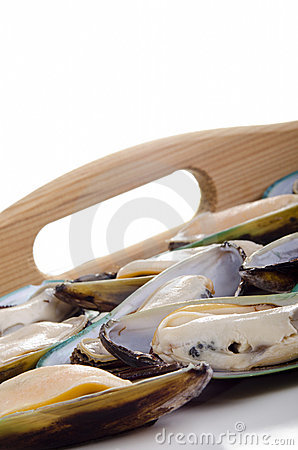 Fresh green lipped mussels before preparation