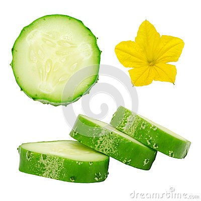 Free Fresh Green Ripe Cucumber Slices And Flower. Stock Images - 102328694