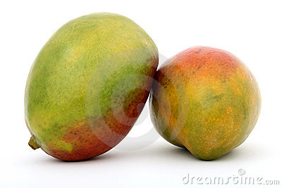Fresh green tropical mango fruit