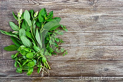 Fresh greens and herbs, harvested from the garden. Herbs for making herbal tea. Bunch useful products on a wooden table Stock Photo