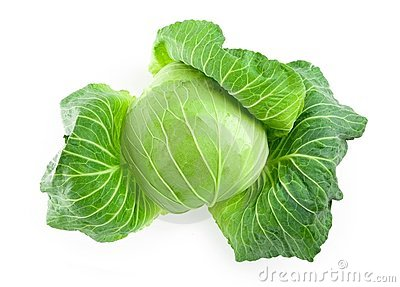Fresh harvested cabbage with the outer most leaves