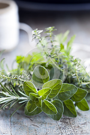 Fresh Herbs Bouquet Garni