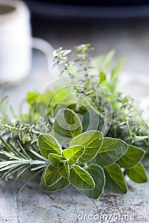 Fresh Herbs Bouquet Garni