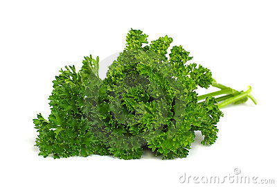 Fresh Herbs - green parsley