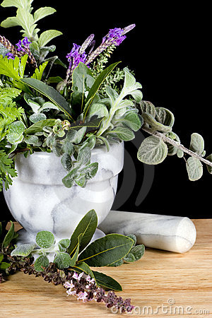 Fresh Herbs in Marble Mortar