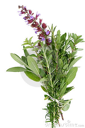 Free Fresh Herbs - Rosemary, Sage, Oregano Stock Images - 1399814