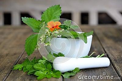 Fresh herbs vitamins