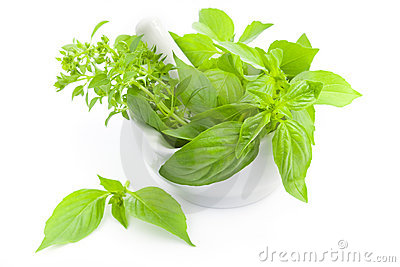 Fresh herbs whith mortar and pestle