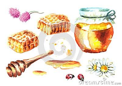 Fresh honey elements set with honeycombs, honey dipper, bottle, flower, camomile, clover and ladybug. Watercolor hand drawn illust Cartoon Illustration