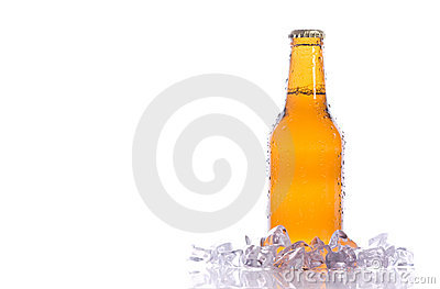 Fresh isolated beer