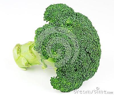 Fresh isolated broccoli