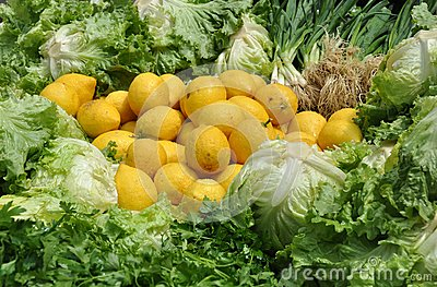 Fresh lemons and green salad ingredients