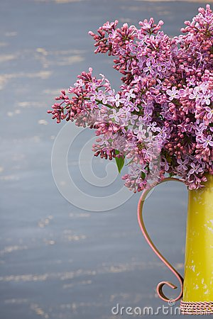 Free Fresh Lilac Flowers In The Metal Yellow Pitcher Against Blue Background. Royalty Free Stock Images - 54596479