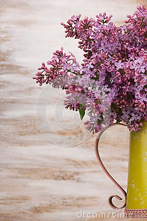 Free Fresh Lilac Flowers In The Metal Yellow Pitcher Against White Background. Stock Images - 54596704