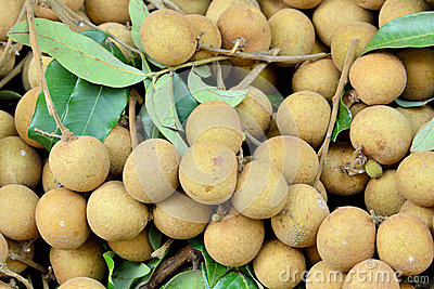 Fresh longan with leaves