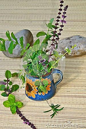 Fresh mediterranean herbs