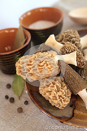Free Fresh Morel Mushrooms On A Plate Stock Photography - 48627322