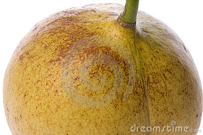 Fresh Nutmeg Macro Isolated